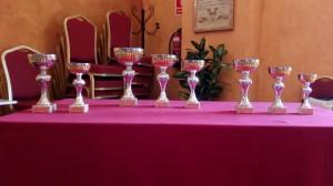 V Memorial Mariano Mimbrero premios
